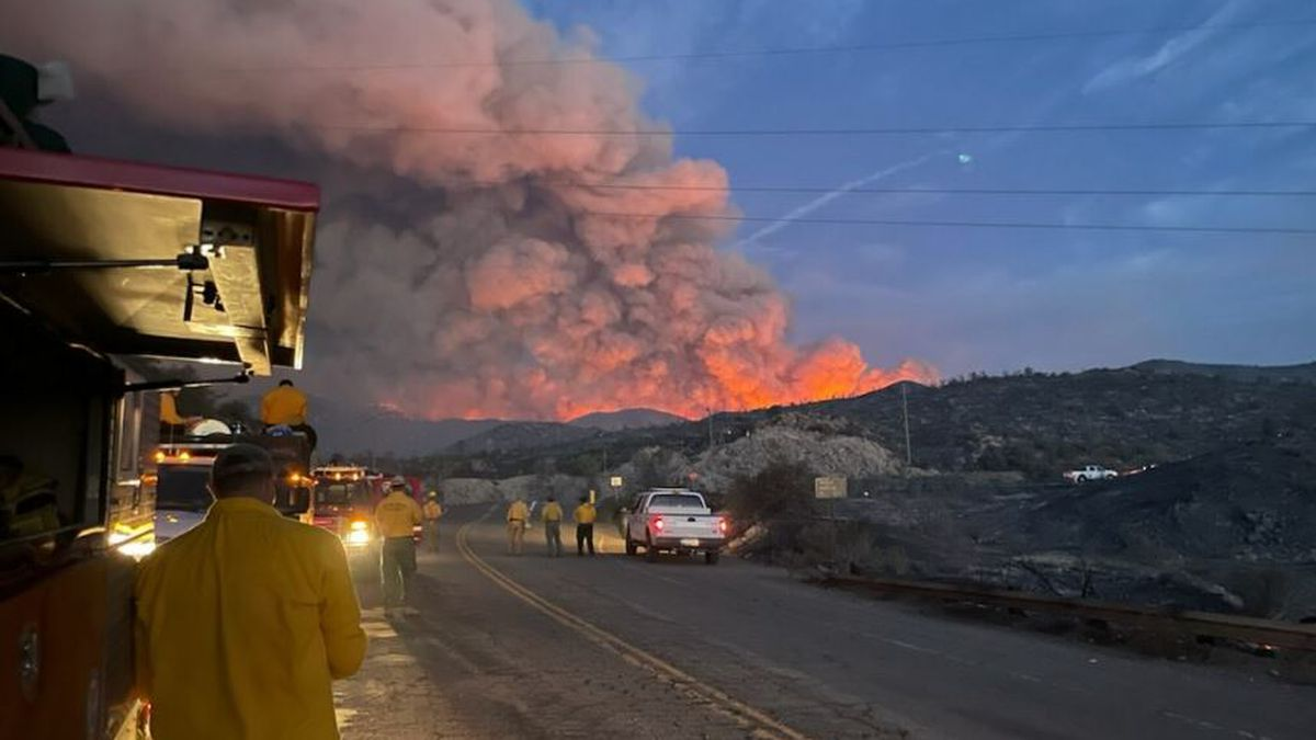 Crews from the Arizona Fire and Medical Authority work on the Telegraph Fire on Tuesday, June 8.
