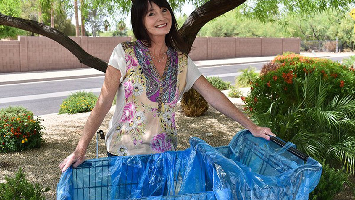 Andi Barness-Rubin demonstrates the Cart Safe liner she developed last year to limit shoppers'...