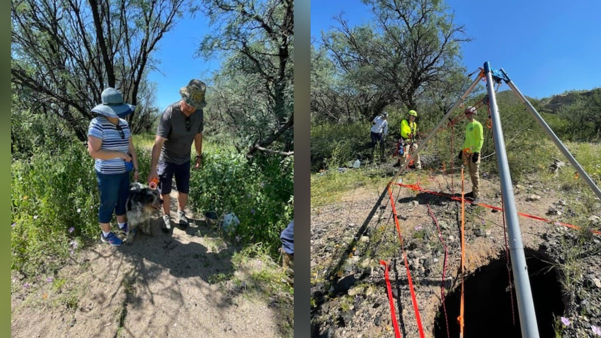 Crews were called to a rescue after a dog fell into a sinkhole in Cochise County early Sunday,...