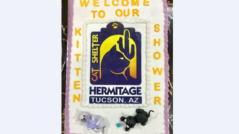 (Source: Hermitage No Kill Cat Shelter & Sanctuary)