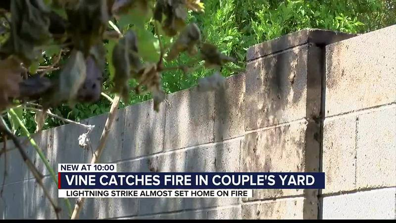 Vine catches fire, threatens home