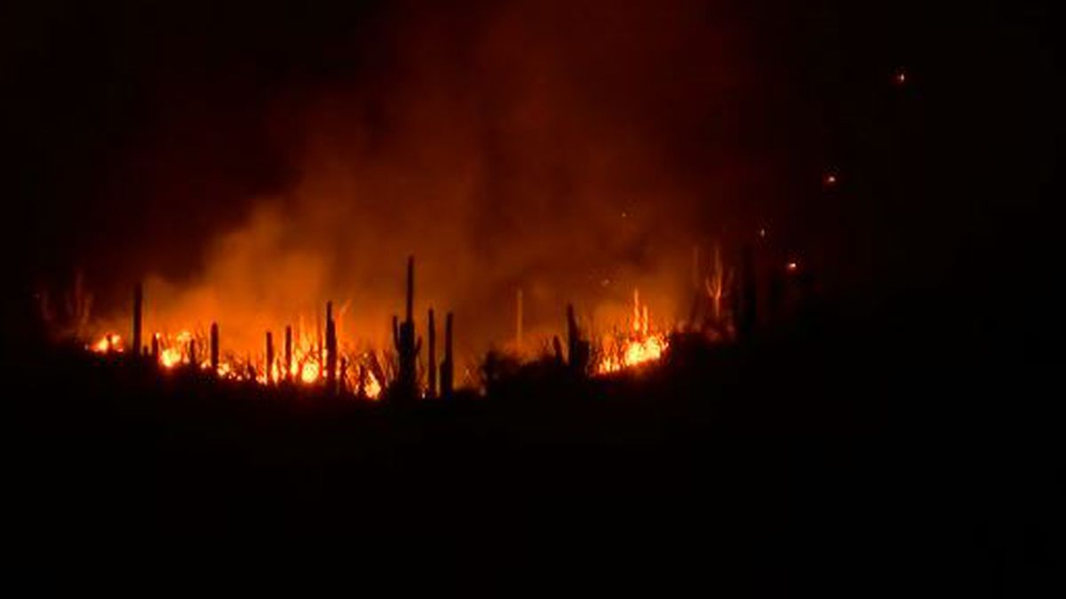 According to Rural Metro Fire, no homes are threatened by the wildfire burning on the lower...