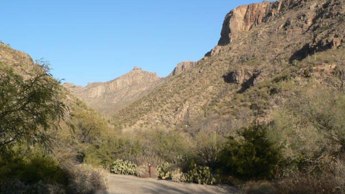 Sabino Canyon (Source: U.S. Forest Service)