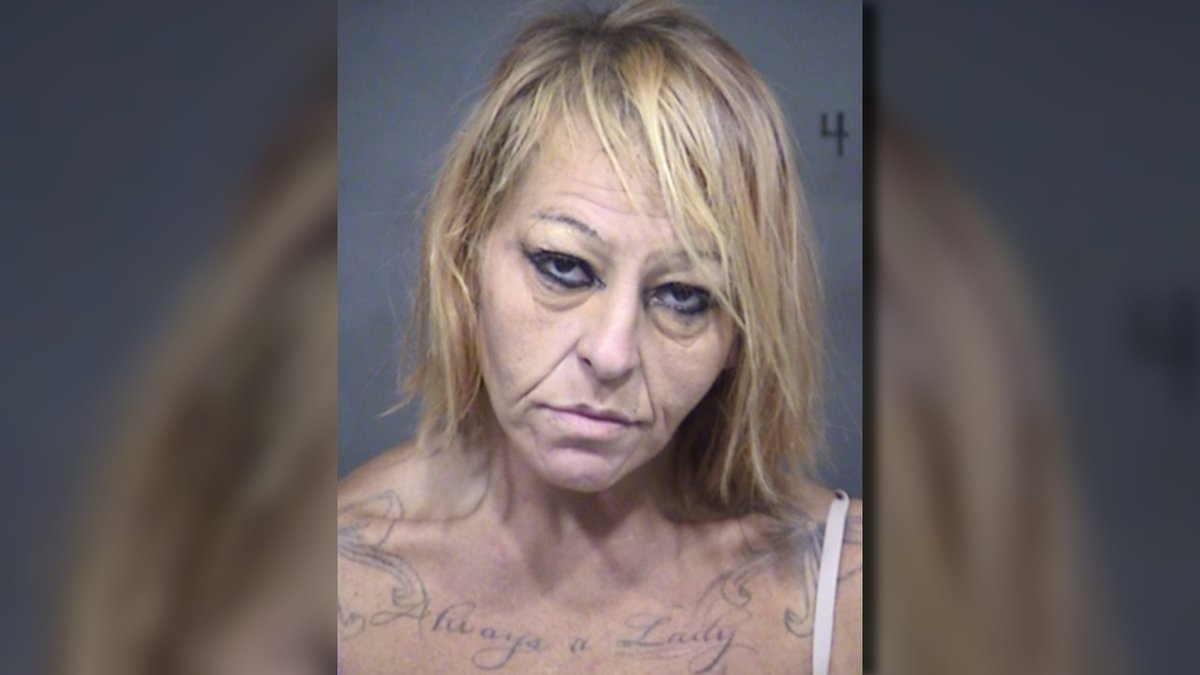 Diana Lee Baker is facing charges of theft and possession of drug paraphernalia.