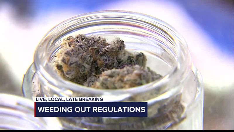 Weeding out restrictive regulations