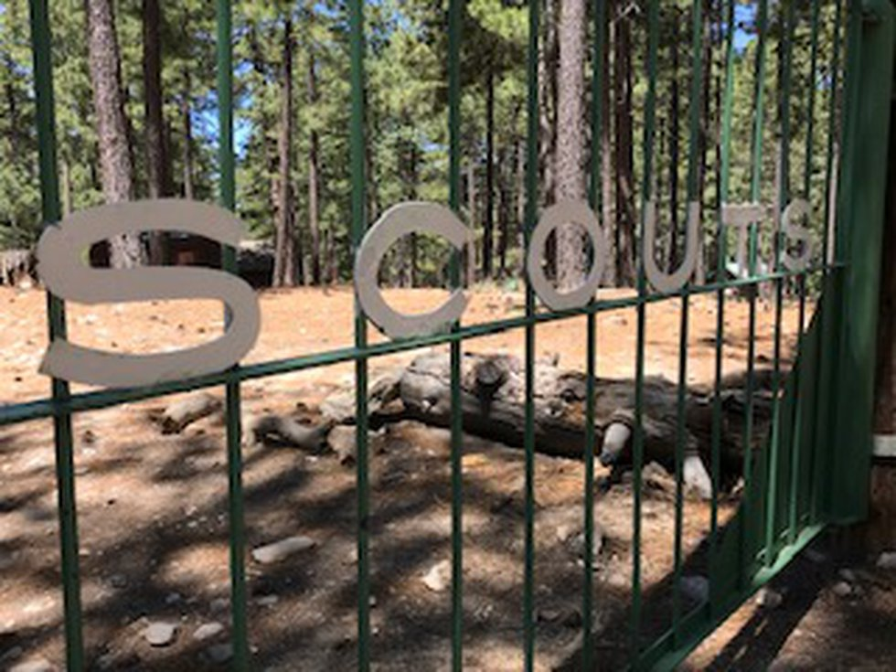 Scouts summer camp on Mt. Lemmon
