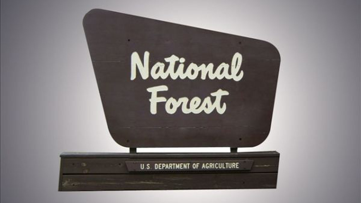 National forests in Arizona are lifting or reducing some fire restrictions.