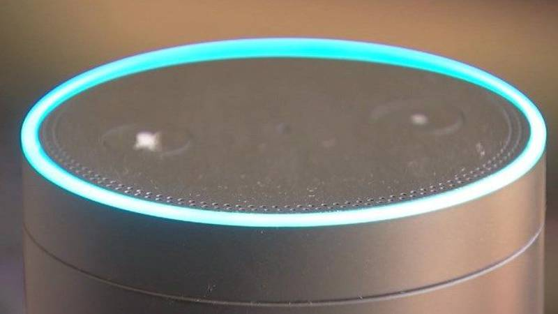 """Amazon launches """"Sidewalk"""" on Echo and Ring Devices"""