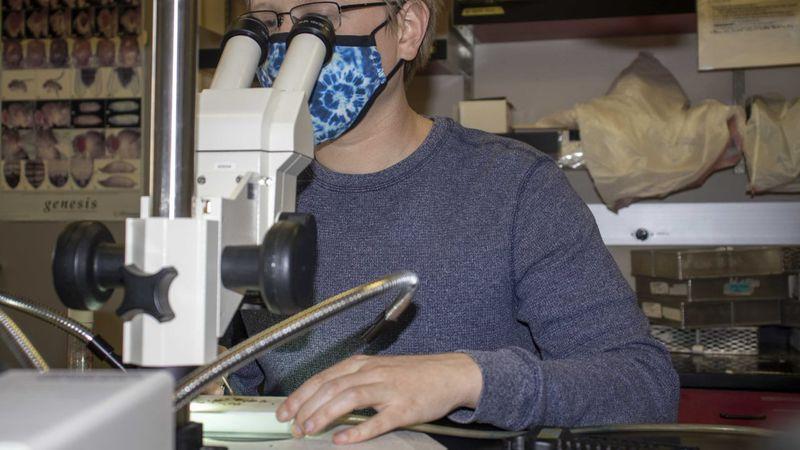 Erik Lehmkuhl, PhD student