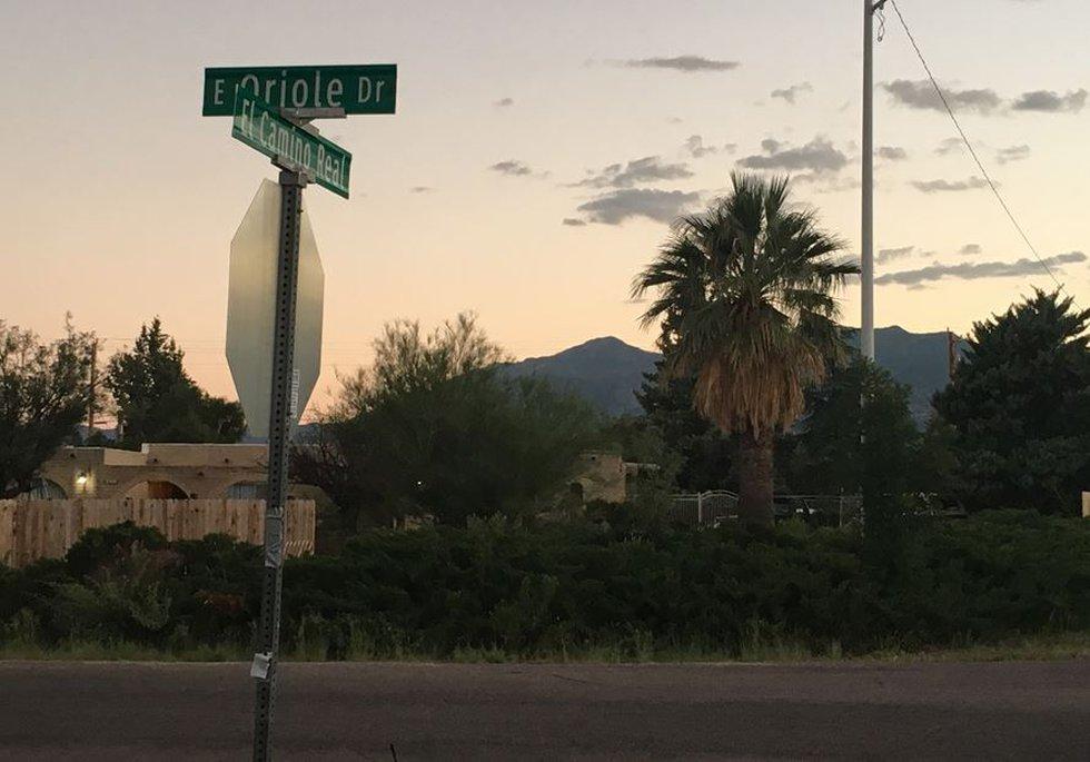 Dog attack in Sierra Vista (Source: Tucson News Now)
