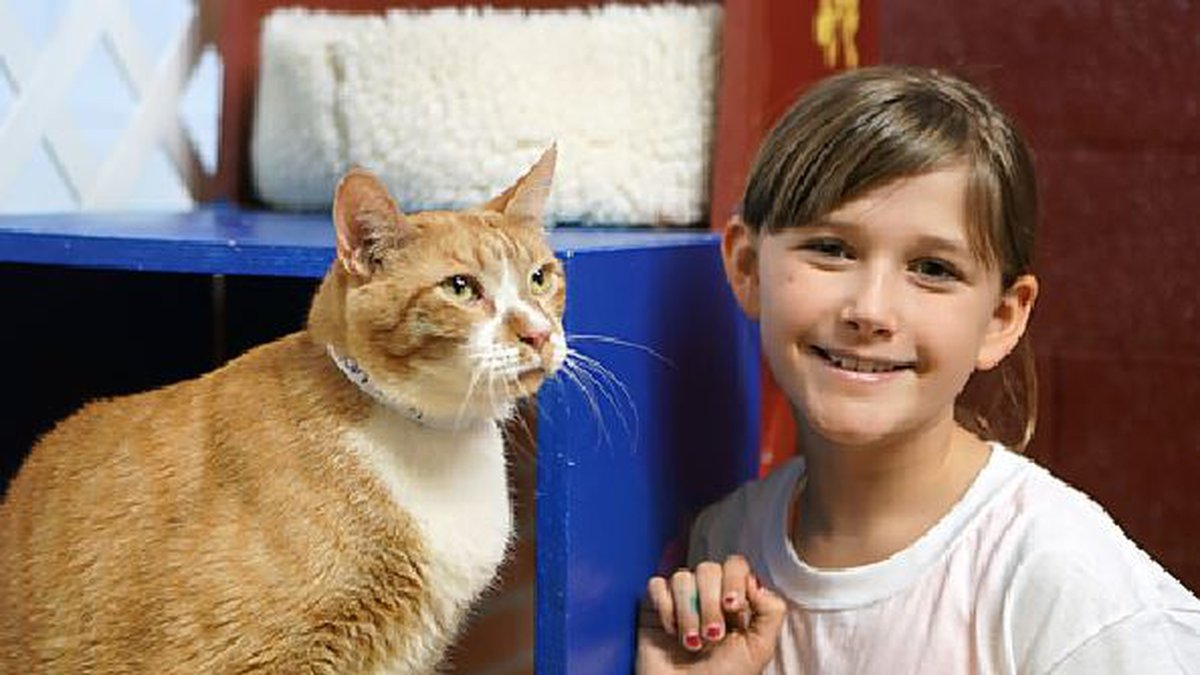 One of the campers and her feline friend (Source: The Hermitage No-Kill Cat Shelter & Sanctuary)