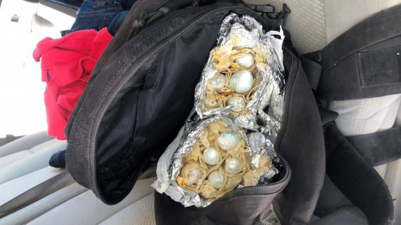 Yuma Sector Border Patrol canine finds fentanyl hidden in burritos.