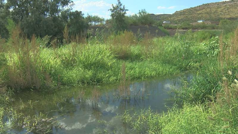 The Santa Cruz River is flowing again thanks to a project by Tucson Water.