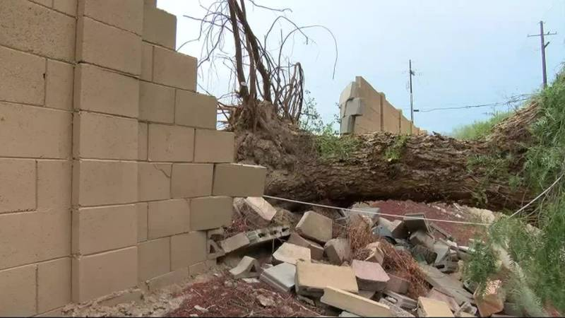 Storm damage business booming as monsoon comes in full force