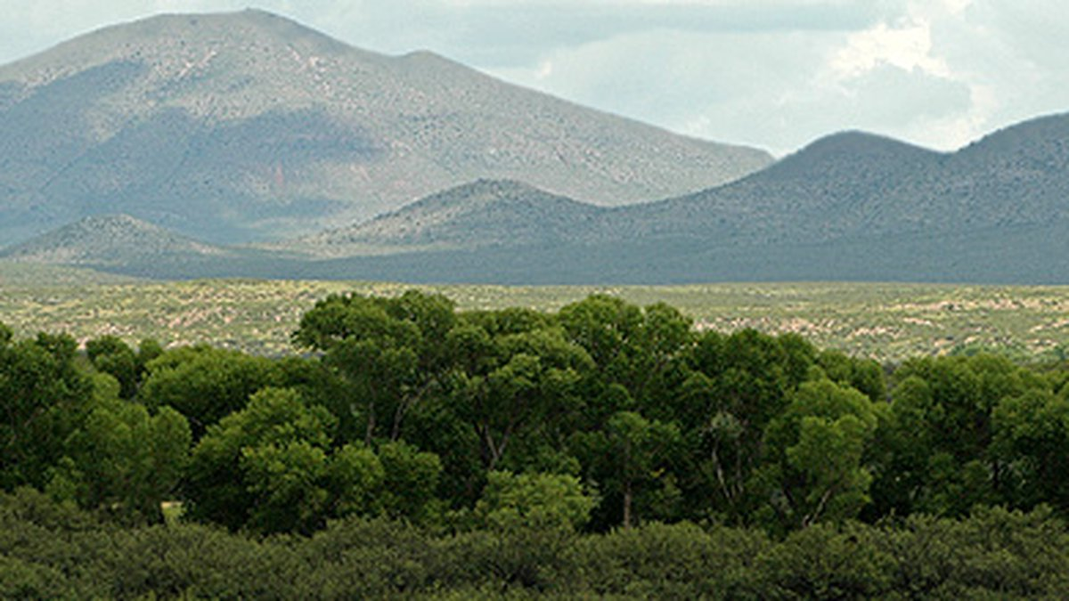Sitting on over 2,300 acres on the U.S.-Mexico border in southeastern Arizona, the San...