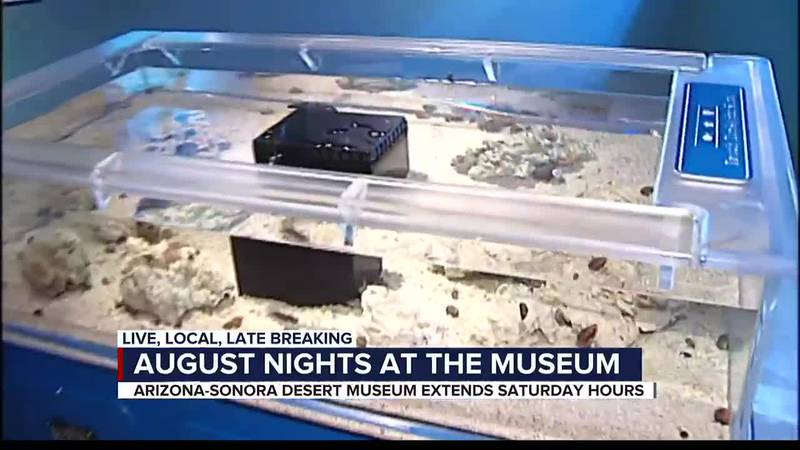 Nights at the Desert Museum coming back next month