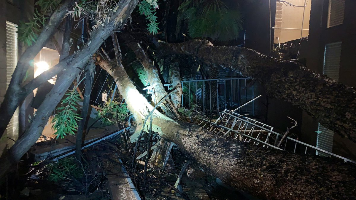 Lightning took out a stairwell and a tree at an apartment complex, trapping second-story...