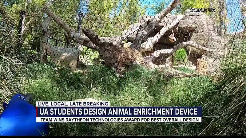 University of Arizona students win Raytheon Technologies Award for design of animal enrichment...