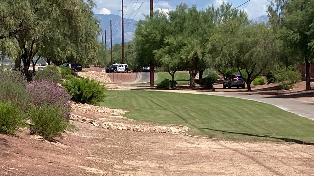 Marana Police are on scene in the area of Thomas Arron and Moore, as a swarm of bees is cleared...