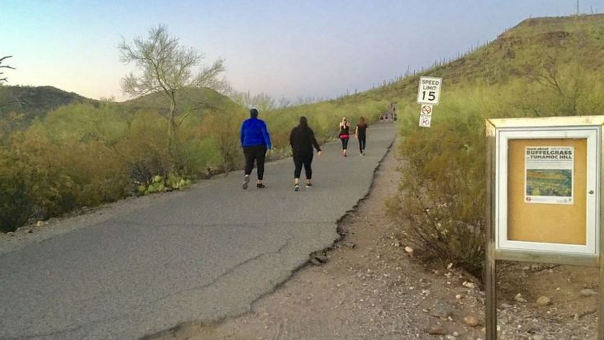 A decomposing body was found near the top of Tumamoc Hill in Tucson on Wednesday, July 21.