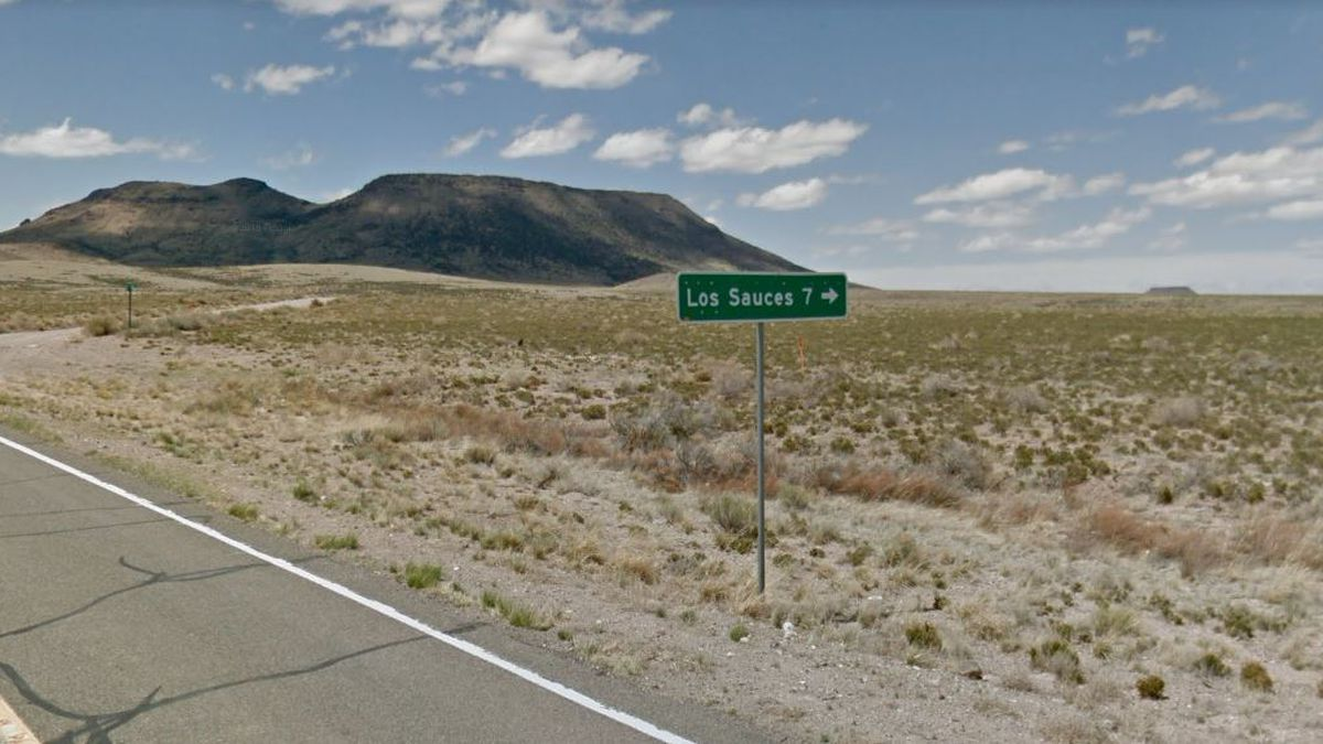 Los Sauces is in Conejos County, Colorado, about 20 miles from Alamosa.