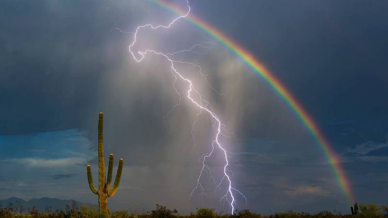 Tucson's Greg McCown is one of the most well-known photographers in Arizona. In 2015, he took...