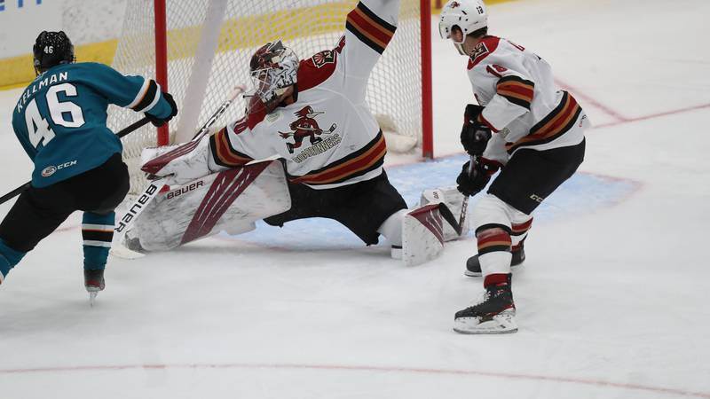 Roadrunners goalie Ivan Prosvetov has given up only four goals on 73 shots in Tucson's first...