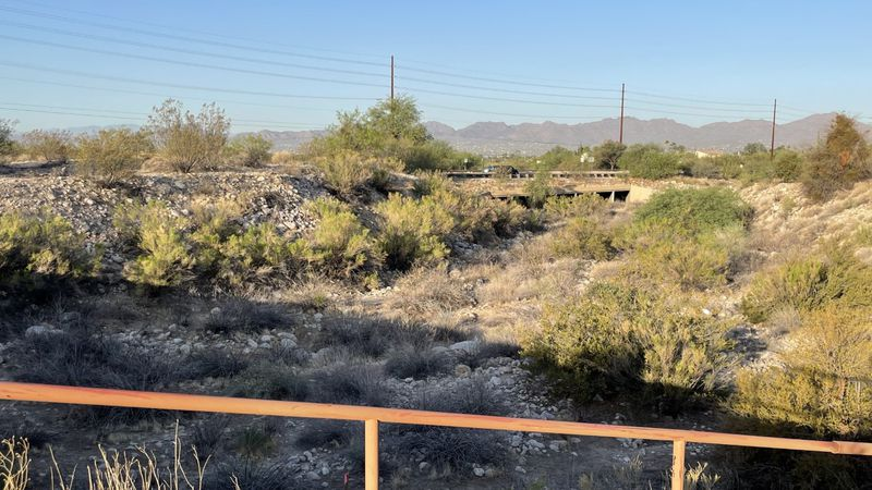 Despite one of the worst droughts in our state's history last year, Pima County is in good...