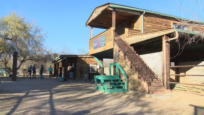 Steady Strides Riding Center was founded in 2017 and offers therapeutic horseback rides to...