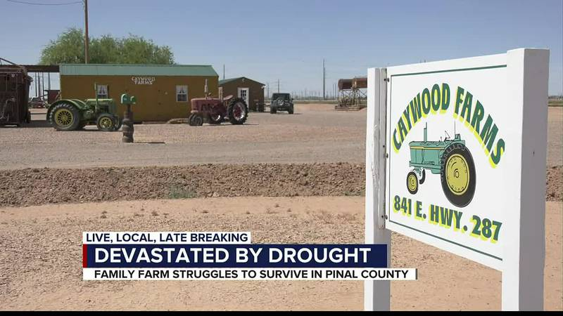Devastated by drought: Family farm struggles to survive in Pinal County