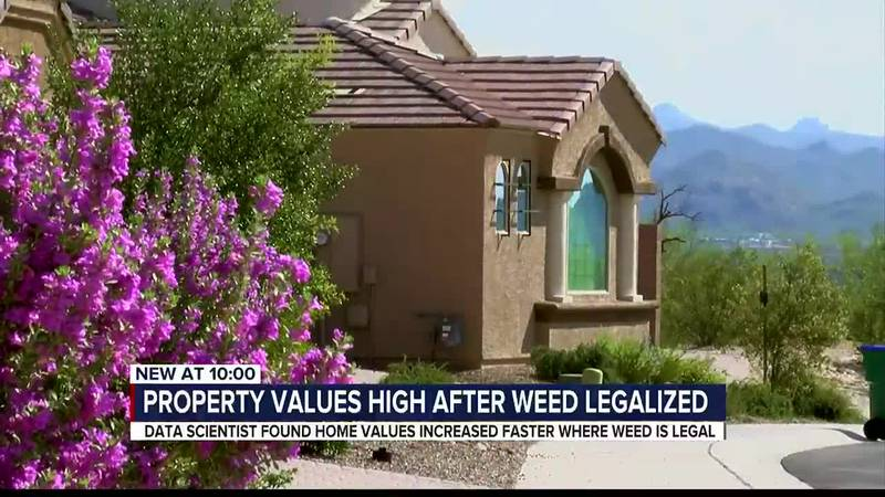 Marijuana legalization linked to higher home values