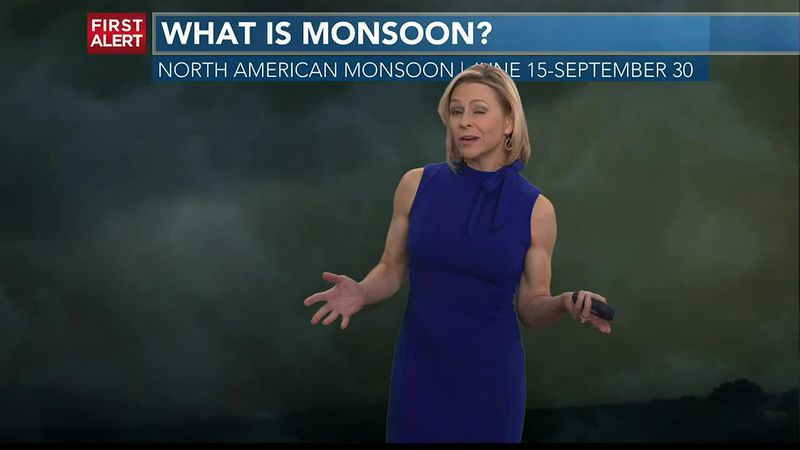 MONSOON 2021: Where does the moisture come from?