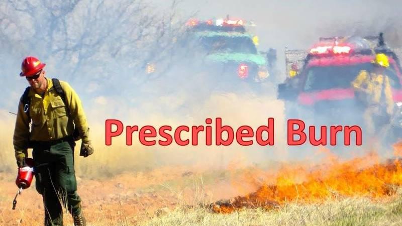 Prescribed burn Fort Huachuca (Source: Public Affairs, Fort Huachuca)